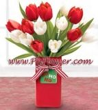 12 Festive Red And White Tulips Are Presented In A Ceramic Vase Tied Up With A Striped Ribbon A Online Flower Delivery Buy Flowers Online White Tulip Bouquet