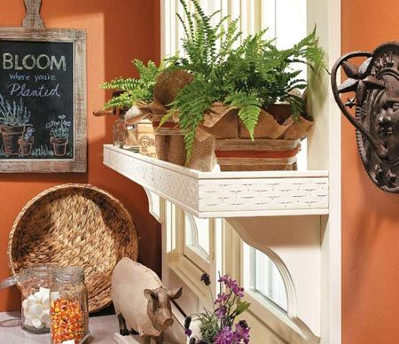Kitchen Storage Ideas Window Garden on kitchen window seating ideas, kitchen window decor ideas, kitchen window backsplash ideas, kitchen window shelf ideas, kitchen window casing ideas, kitchen window lighting ideas, kitchen window cabinet ideas,