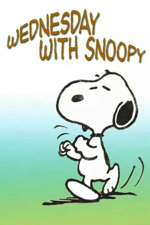 Its Wednesday | Snoopy love, Snoopy, Snoopy quotes