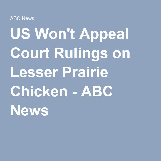 US Won't Appeal Court Rulings on Lesser Prairie Chicken - ABC News