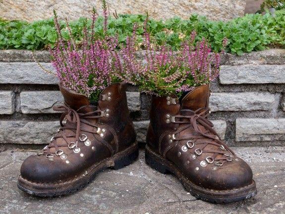 Blumen Kommen In Ungewöhnlichen Gefäßen Besonders Gut Zur Geltung ... Haus Und Garten Verschonern Tipps