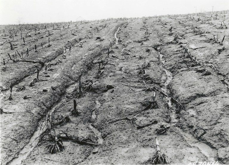 FDR and the Dust Bowl (With images) Dust bowl, Erosion, Fdr