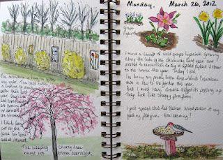 KATE'S CORNER- garden journal