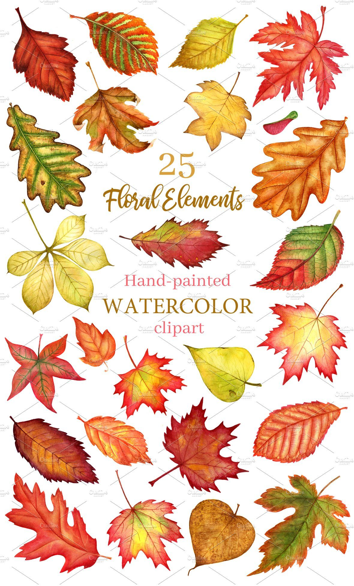 Autumn leaves watercolor clipart , #sponsored, #posters#wallart#quotes#logo #Ad