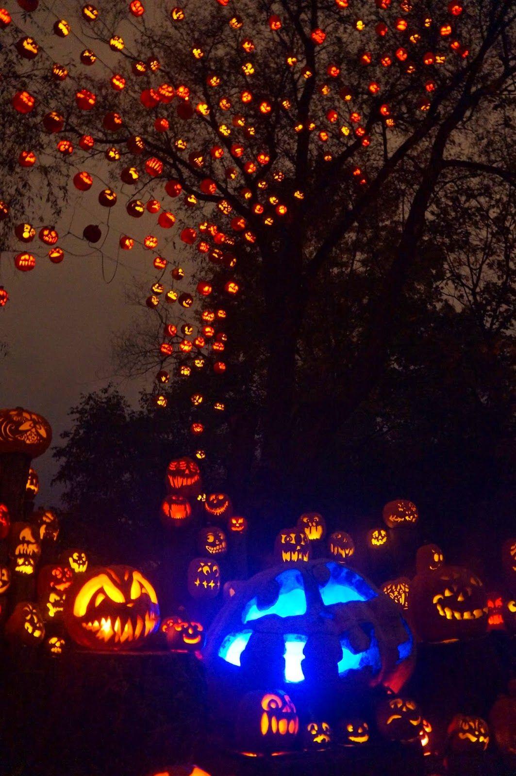 10/19/14: roger williams park zoo jack-o-lanterns a to z   halloween