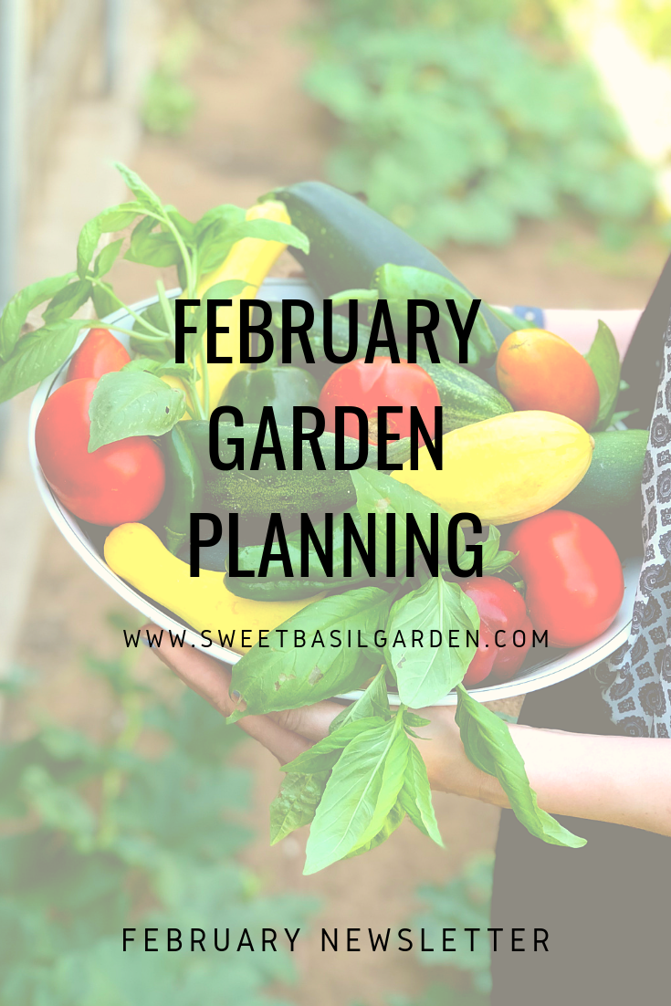 Beginning A Garden Select The Vegetables You Want To Grow In