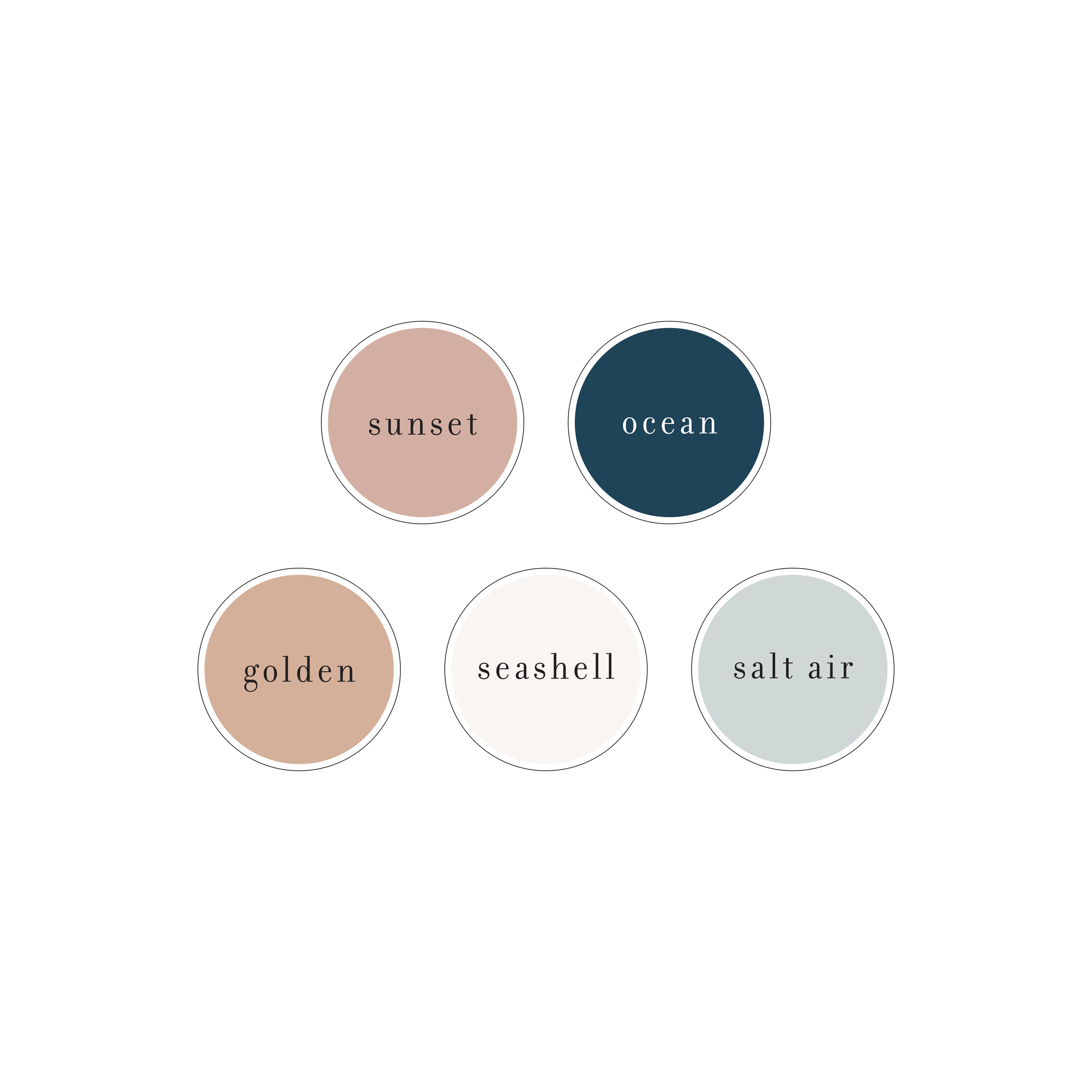 Beachy Summery Color Palette For A Photography Brand New Branding Showit Website Design Comi Website Color Palette Brand Color Palette Brand Colour Schemes
