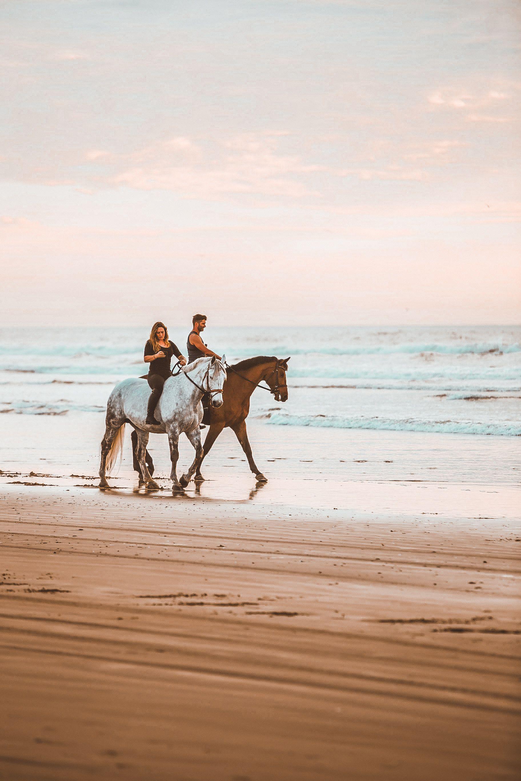 Beach Filters Beach Horseback Riding Beach Rides Horseback Riding