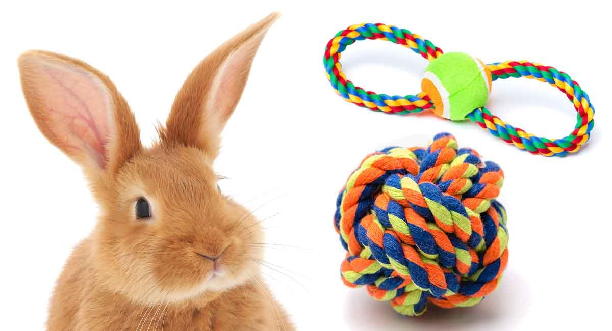 DIY rabbit toys are easy and fun to make! Just because