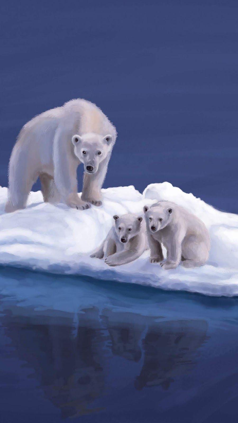 Pin On Animals Animal polar bears on ice wallpapers hd