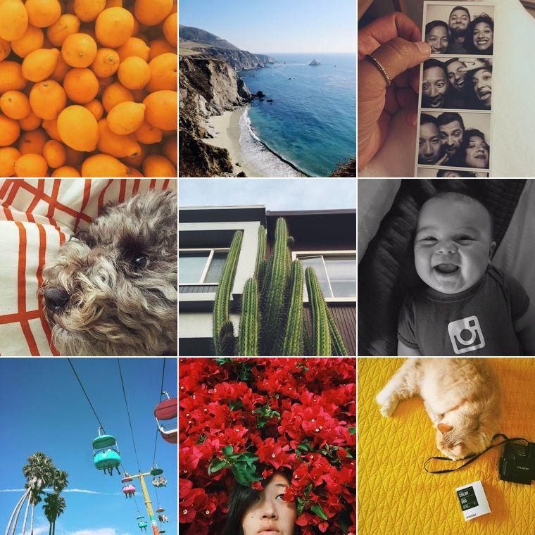 Melisa Hadzimujic (@melisahadzimujic) • Instagram photos and videos