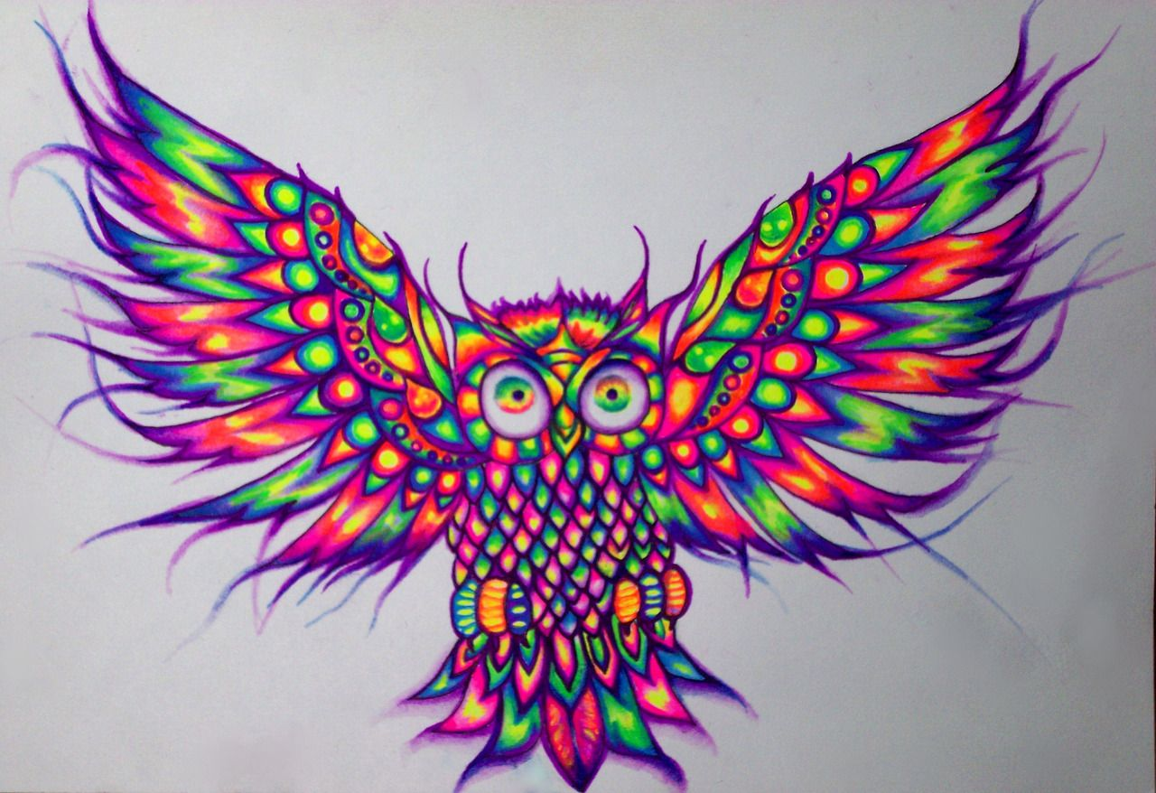 art trippy rainbow dope birds Awesome night acid ...