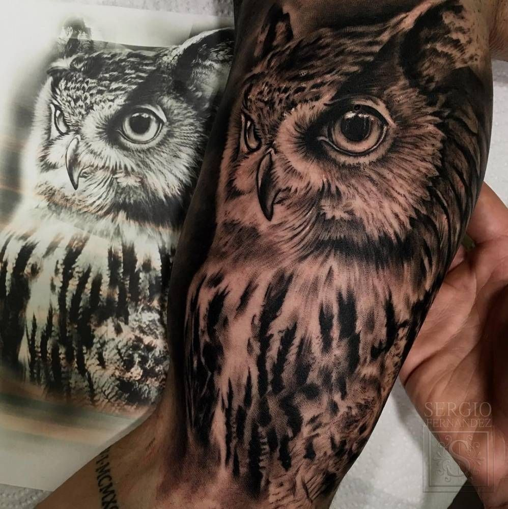 28+ Amazing Traditional owl tattoo black and grey image HD