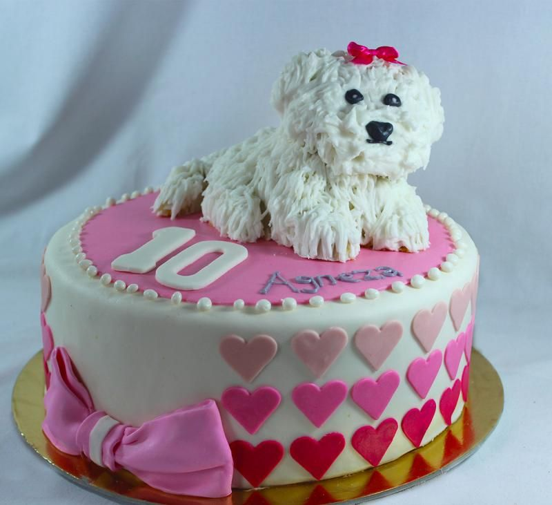 Maltese Puppy Themed Birthday Party Cake Puppies Dog Cakes