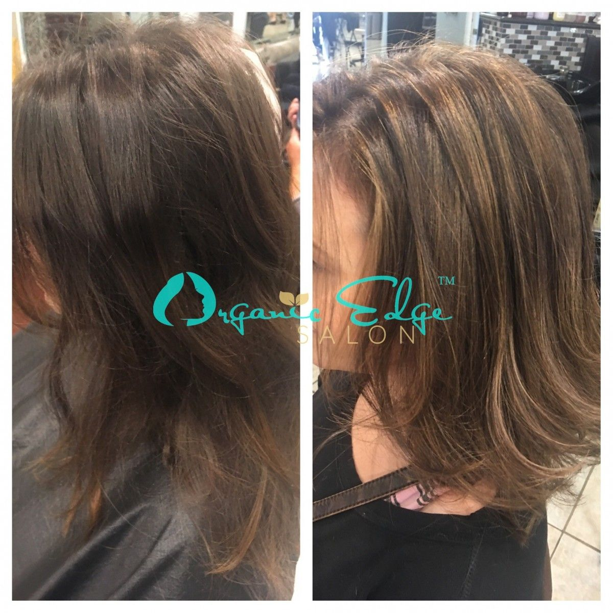 #Brittany #Brunette #Highlights #Lowlights #Style & Brittany #Brunette #Highlights #Lowlights #Style | Organic Edge ...