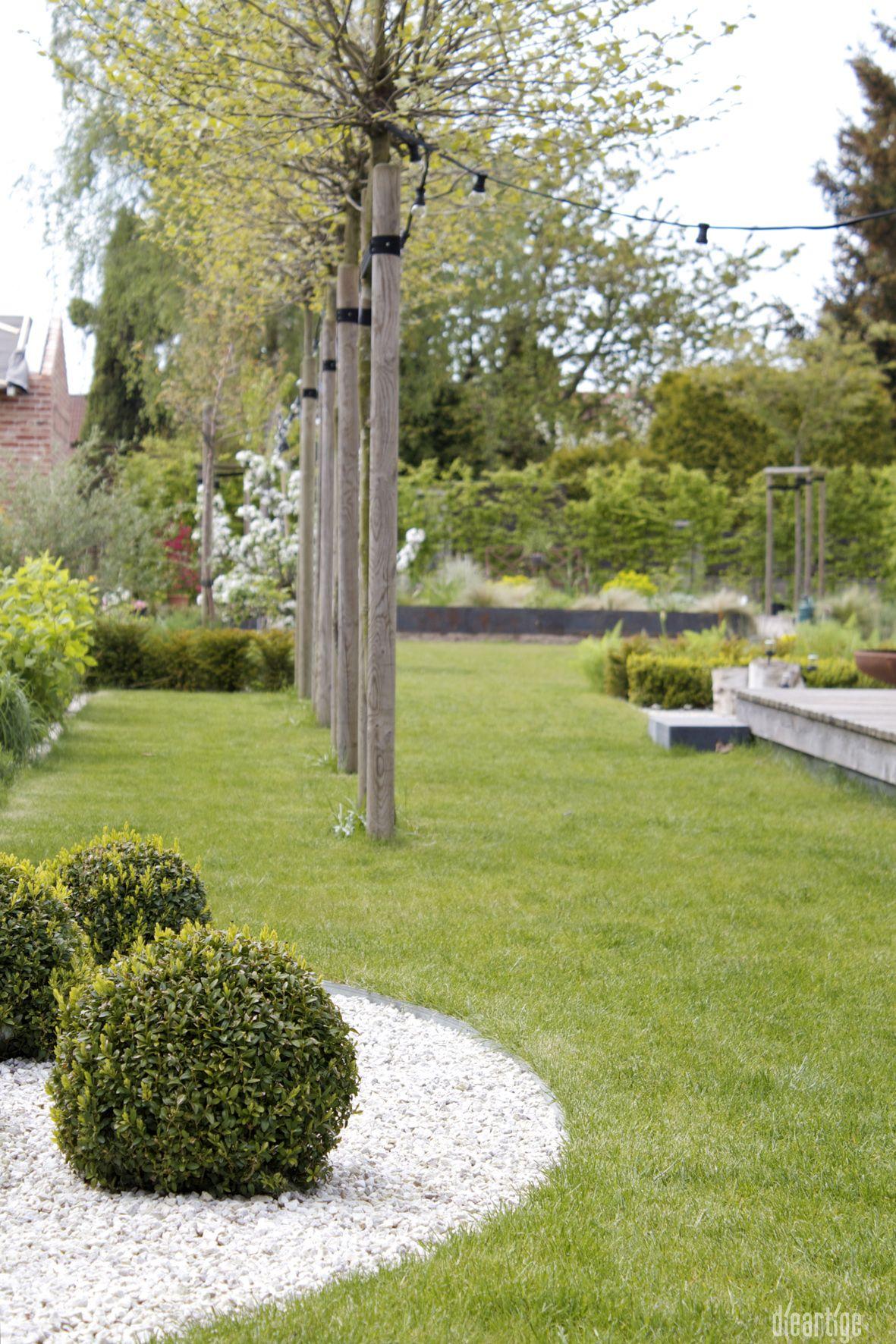 Inspirierend Pflegeleichter Garten Ohne Rasen Dekoration Von Dieartigedesign - // Buchs, Kugelplatanen, Weißer Splitt