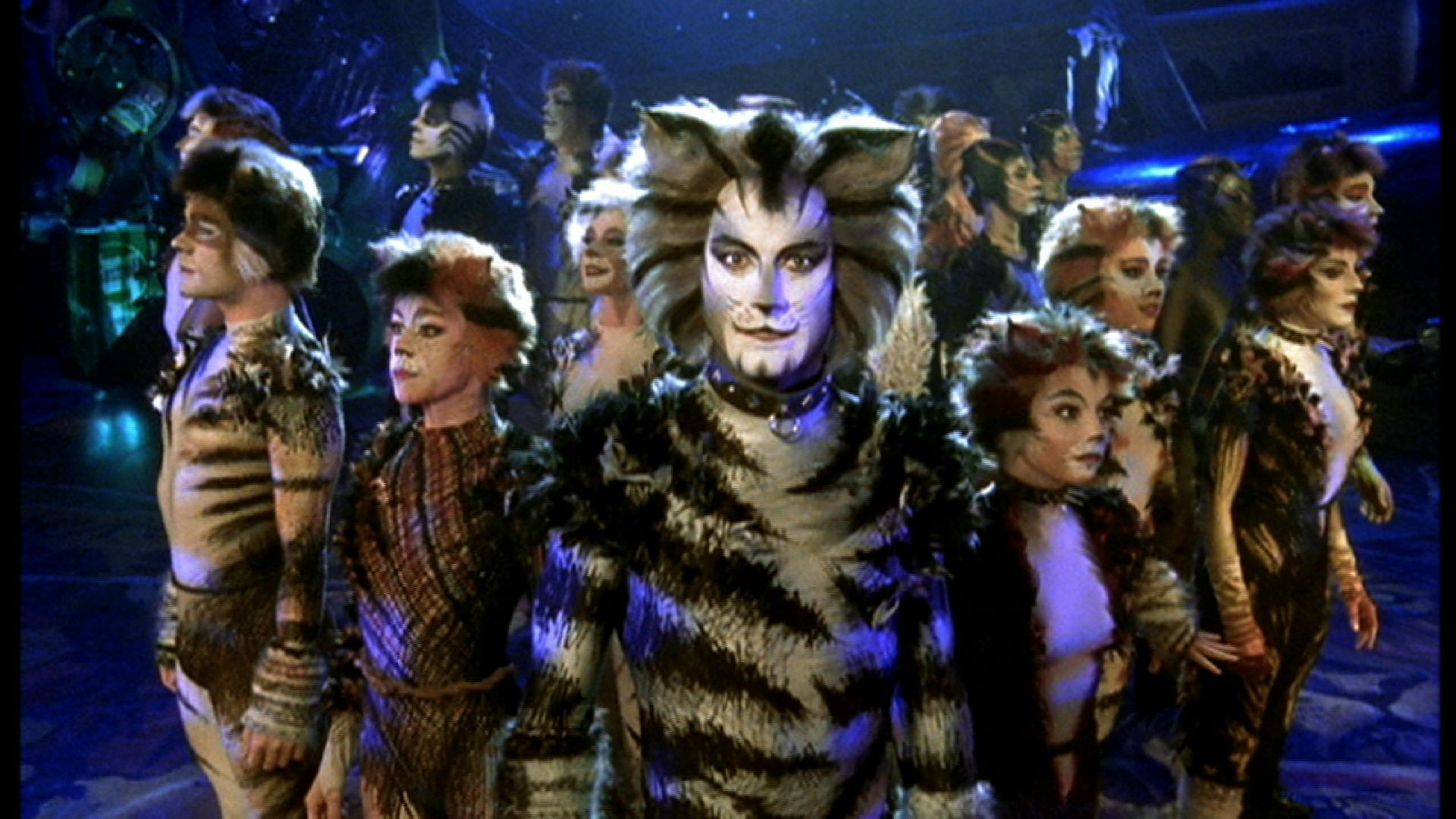 Cats Cats musical, Jellicle cats, Cat movie