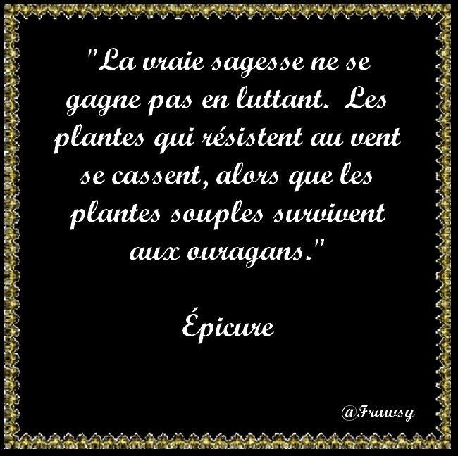 Citation D Epicure Suivre Le Courant Citations D Humeur