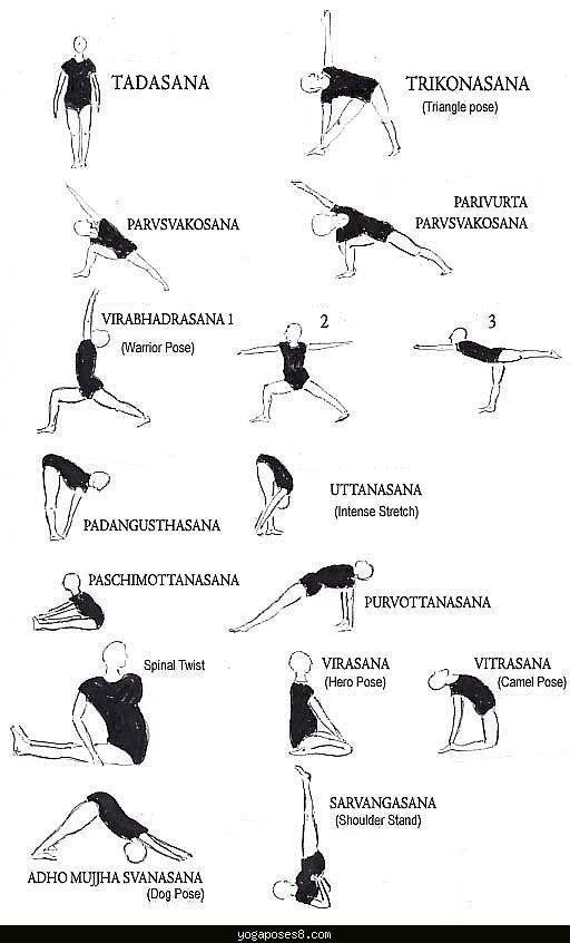 Cool Yoga Asanas Chart