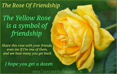 The Yellow Rose Of Friendship With Images Friendship Symbols