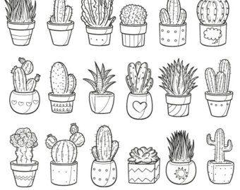 Succulent Cactus Potter Garden Decor Home Plant Doodle