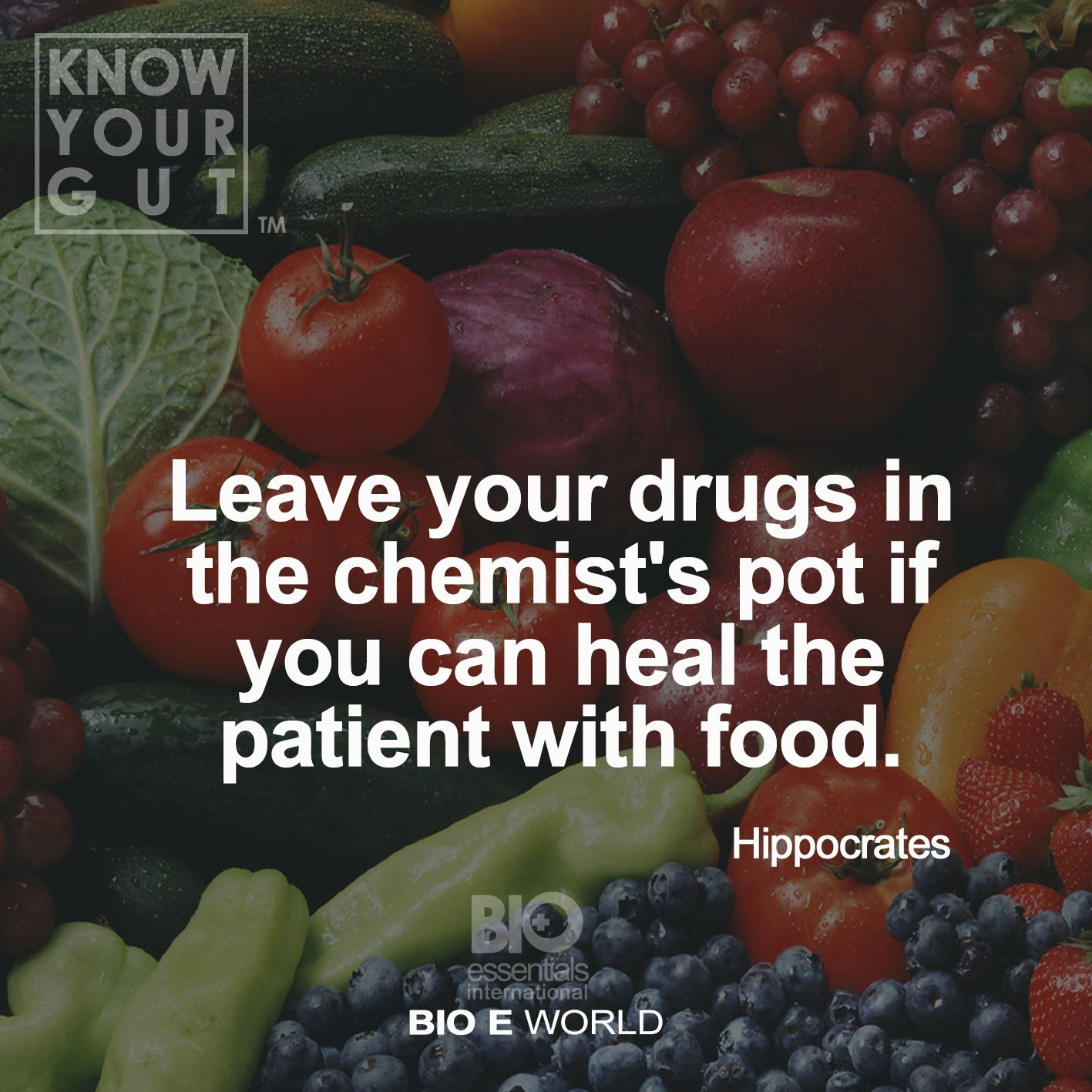"""""""Leave your drugs in the chemist's pot if you can heal the patient with food"""" - Hippocrates"""