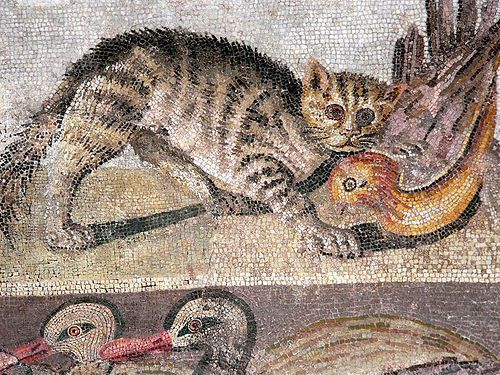 Detail of a mosaic from the House of the Faun, Pompeii