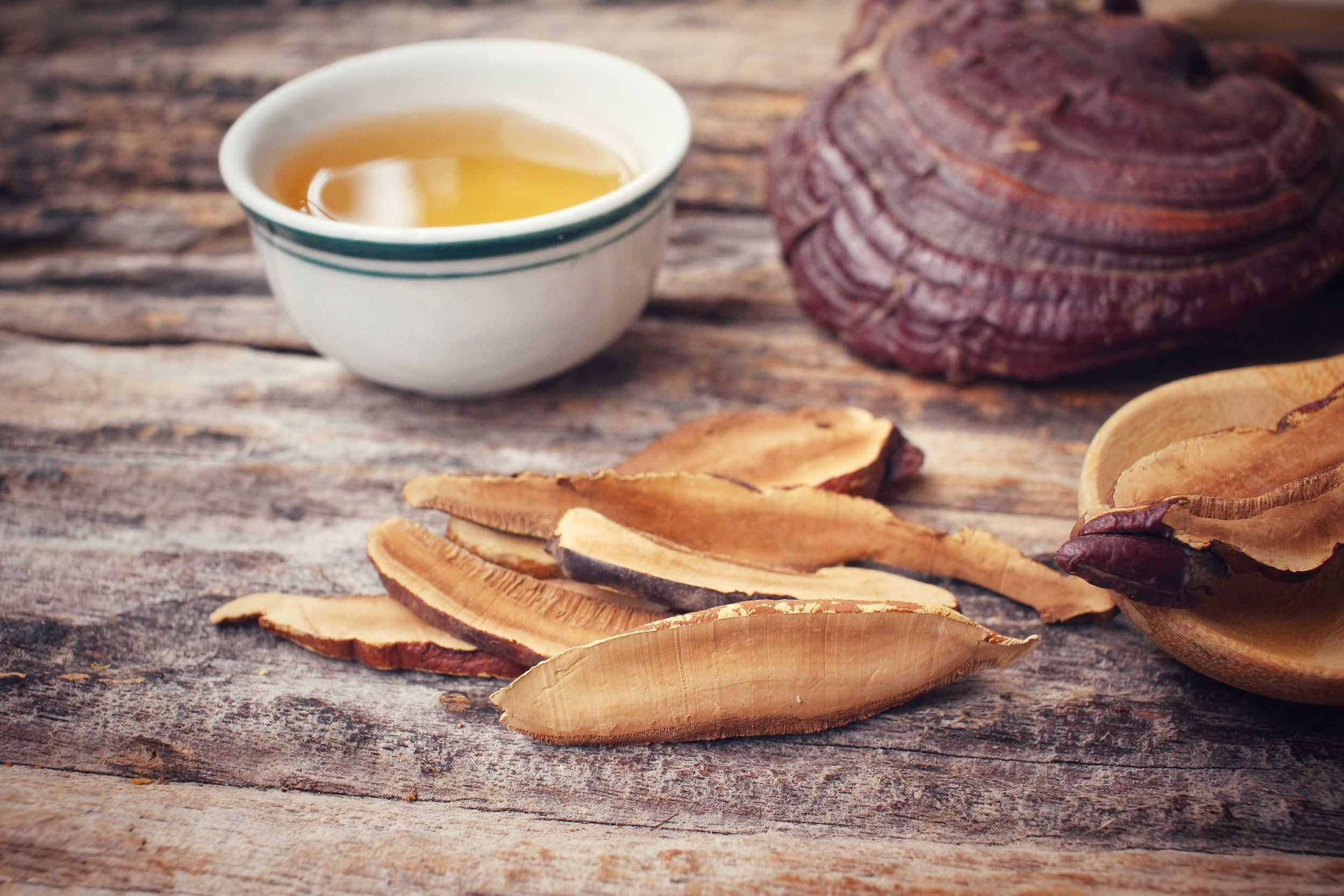Adaptogens to Protect Against Stress
