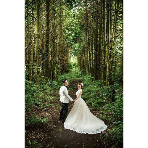 www.igistudio.co.kr #igistudio #제주도 #제주웨딩 #제주셀프웨딩 #제주웨딩스냅 #웨딩촬영... #wedding #weddings