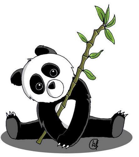 Photos panda bambou dessin page 2 pandas panda bear anime chibi et chibi - Coloriage petit panda ...