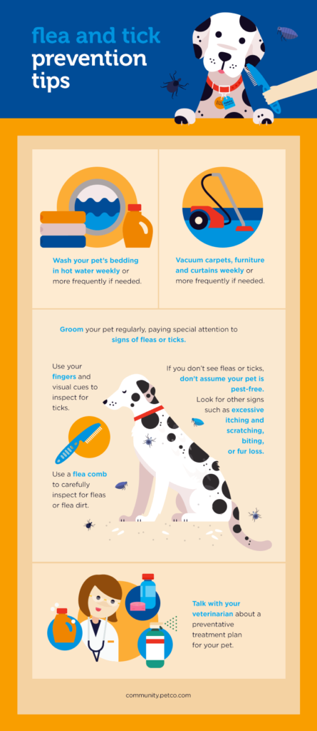 Ways To Prevent Fleas And Ticks Flea And Tick Cat Fleas Fleas