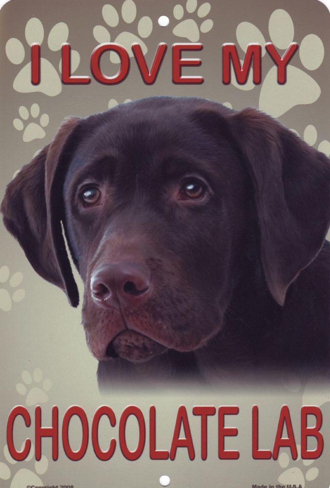 Chocolate+Labrador+Retriever+Parking+Sign+Wall+Plaque+Sign