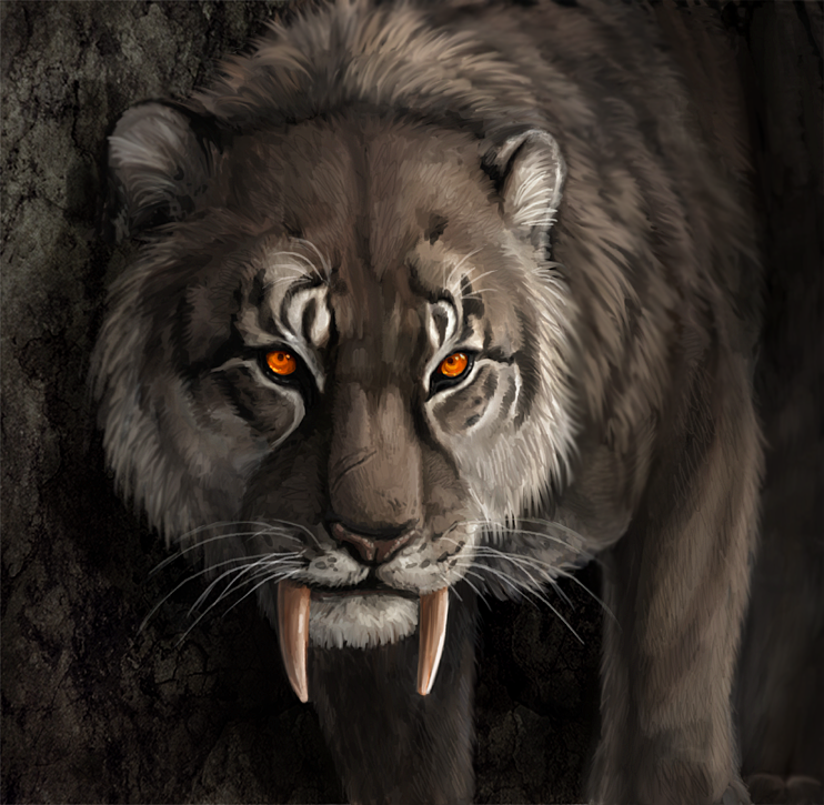 Shongshar Big Cats Art Mythical Creatures Art Mystical Animals