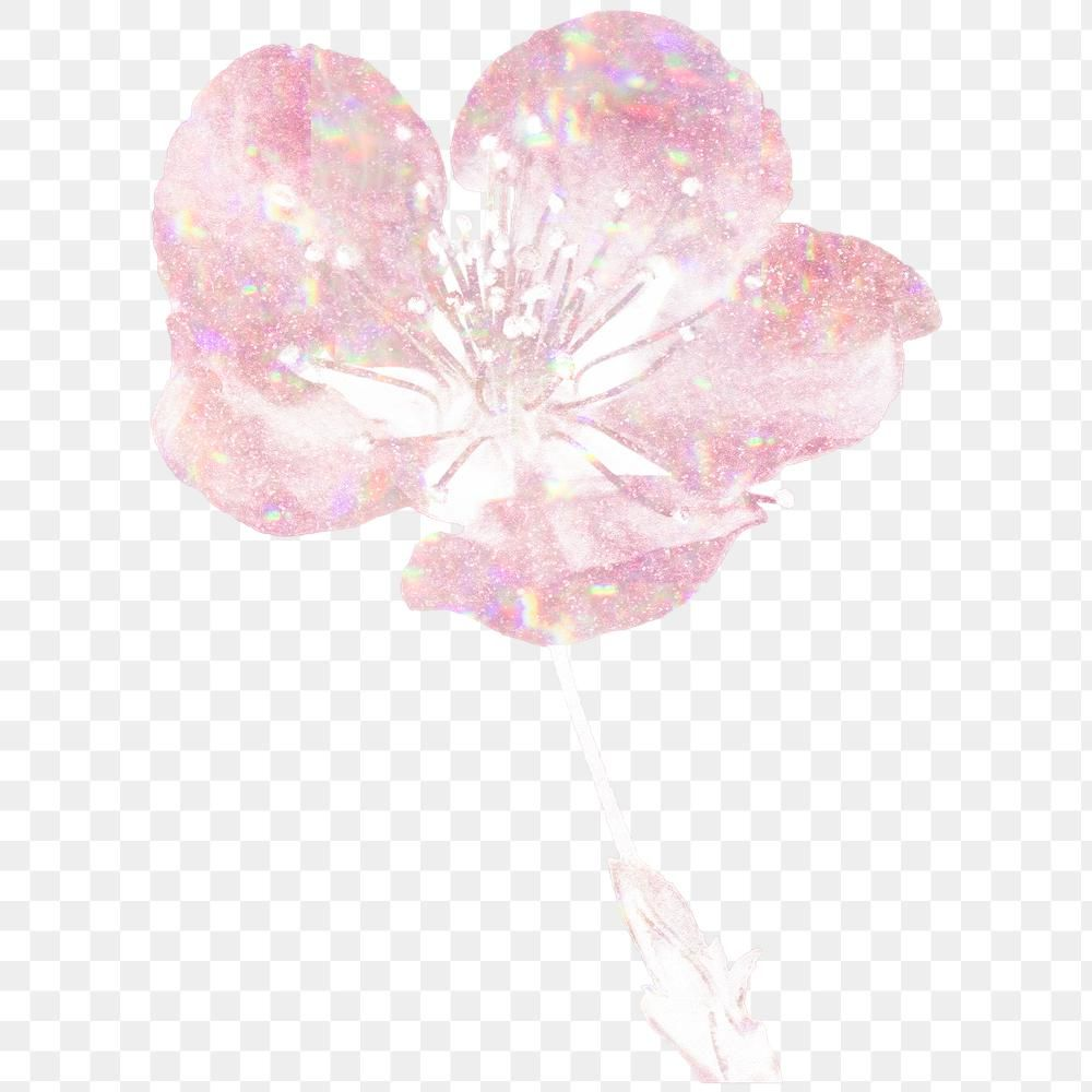 Pink Holographic Cherry Blossom Flower Design Element Free Image By Rawpixel Com Adj