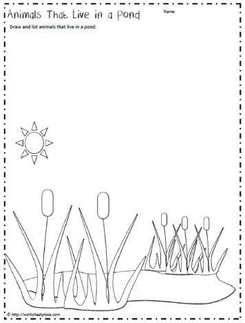 Pond Animals Worksheet With Images Pond Animals Water Animals
