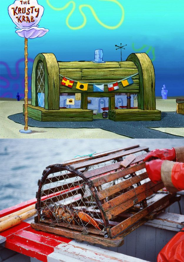 Krusty Krab Destroyed : krusty, destroyed, Facts, Destroy, Worldview, Trap,, Facts,