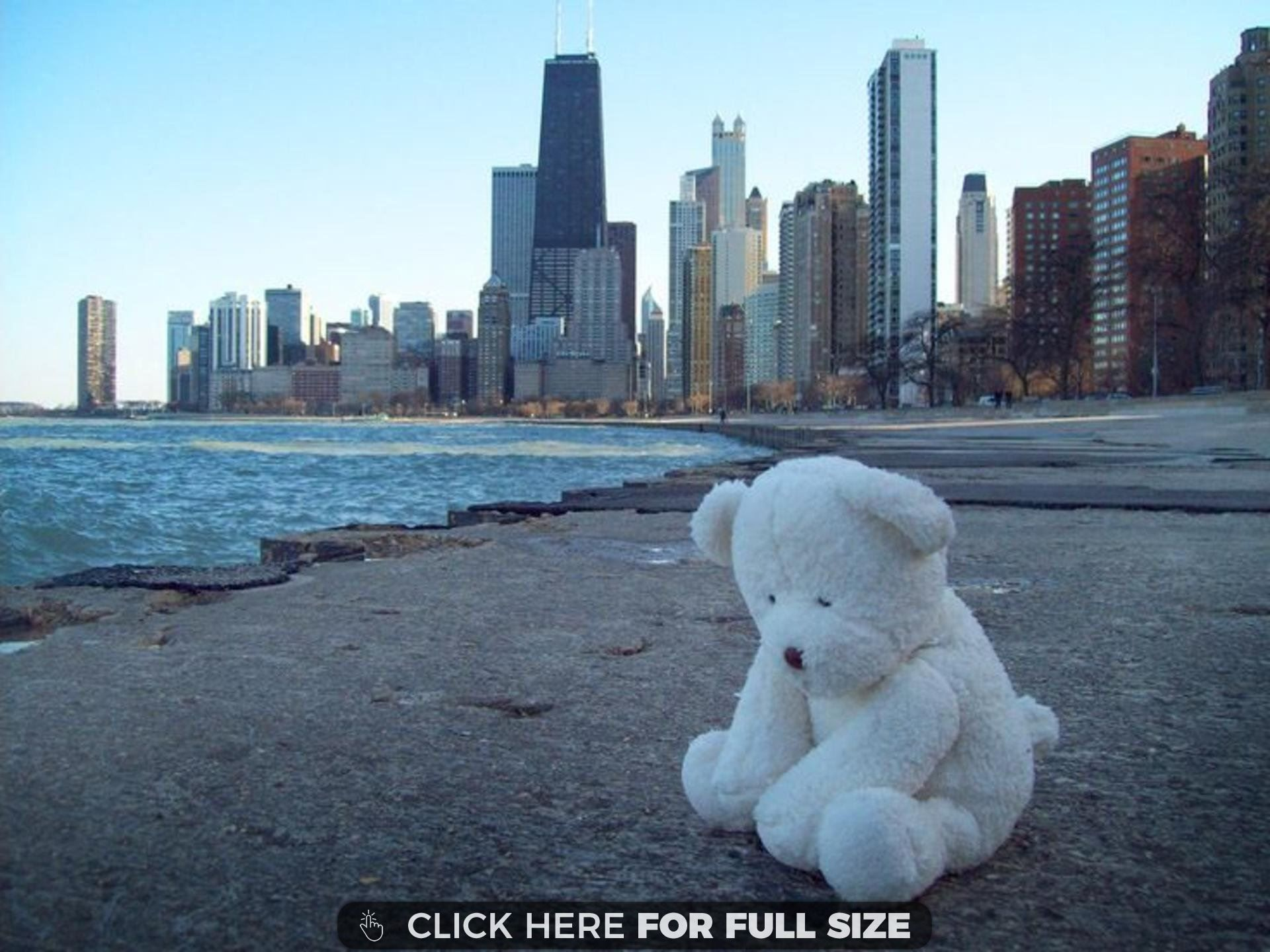 Sad Teddy Bear 19437 Desktop Wallpapers Teddy Bear Bear My