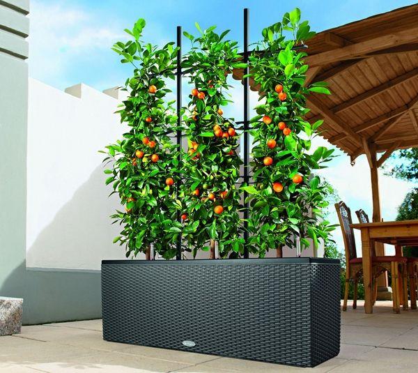 Balkonpflanzgefasse Bezaubernde Und Einfache Dekorationsideen Fur