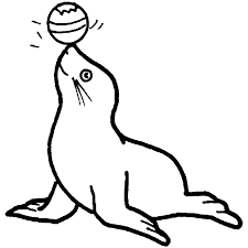 Resultado De Imagen Para Dibujos Lobo Marino Animal Coloring Pages Coloring Pages Dolphin Coloring Pages