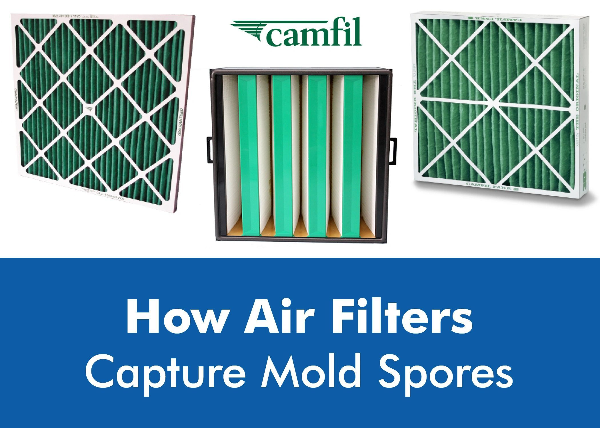 How Air Filters Capture Mold Spores In The Air Learn how