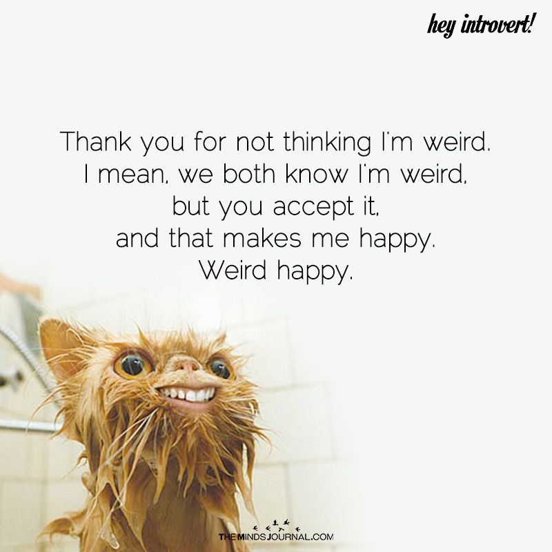 Thank You For Not Thinking I'm Weird | Funny thank you ...