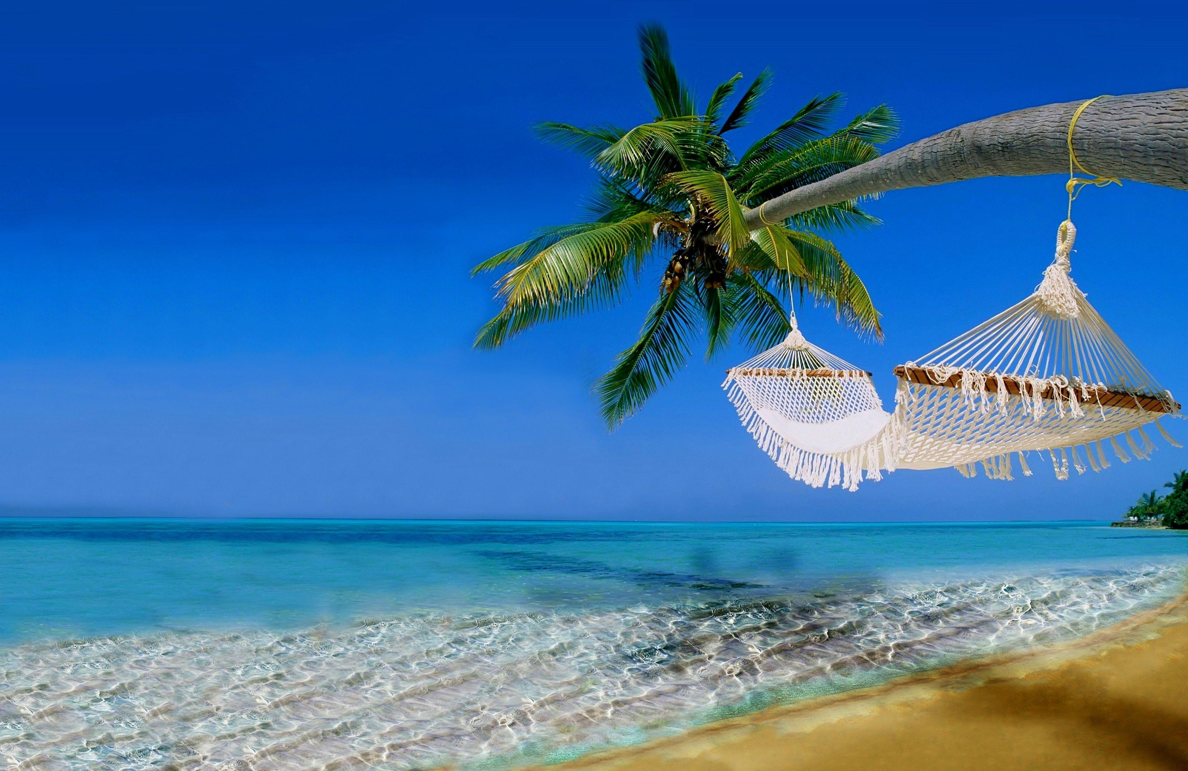 3840x2494 tropical beach 4k full screen wallpaper for