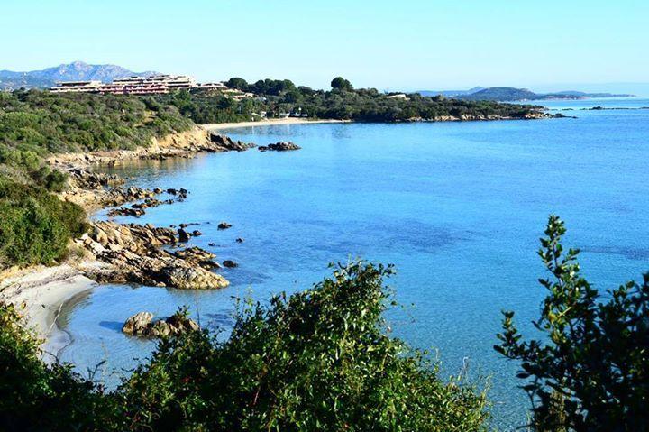 by http://ift.tt/1OJSkeg - Sardegna turismo by italylandscape.com #traveloffers #holiday | #portisco #volgoolbia #volgosardegna #lanuovasardegna #sardegnaalmare #sardegnaofficial #sardiniamylove #loves_sardegna #unionesarda #likes_sardegna #loves_united_sardegna #sardegna_super_pics #bestsardegnapics #focussardegna #top_italia_photo #photo_beaches #igersardegna #vivosardegna #sardegna_live Foto presente anche su http://ift.tt/1tOf9XD | January 28 2016 at 09:44AM (ph sonia.solinas )…