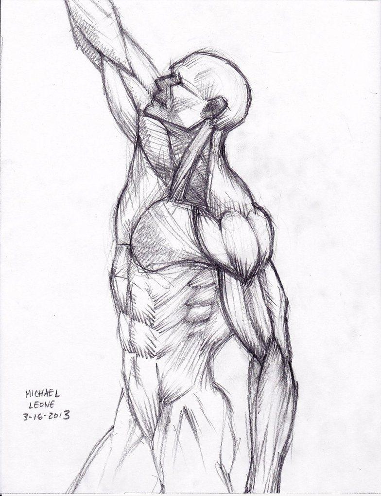 Pin de valeria en Anatomía Humana   Pinterest   Anatomía, Parte ...