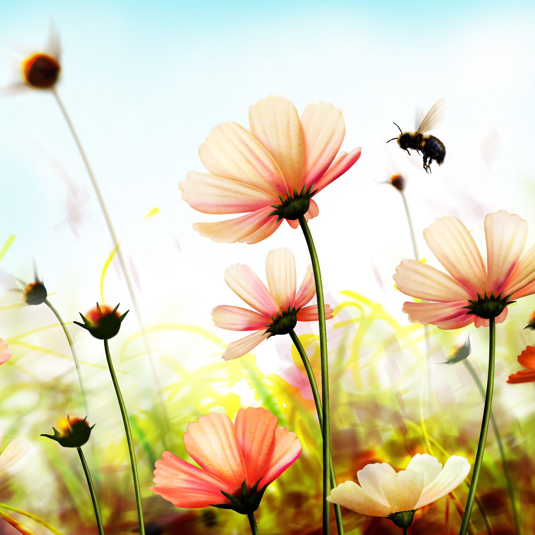 Pin By Leeanna Michael On Flower Flower Wallpaper Nature Wallpaper Spring Wallpaper