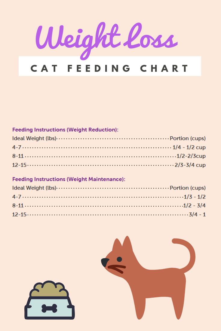 Does Your Cat Need Help Losing Weight You Can Use This Cat Feeding Chart To Help However Weve Got Lots More Great I In 2020 Best Cat Food Cat Feeding Chart