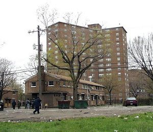 18 Chicago Housing Projects Ideas Chicago Chicago History My Kind Of Town