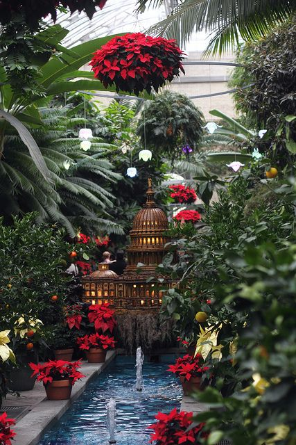 This Is Amazing In Person Must See In Dc Over The Holidays United States Botanic Garden Dc