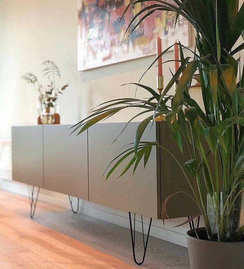 Bild könnte enthalten: Pflanze und Innenbereich #strandhuis
