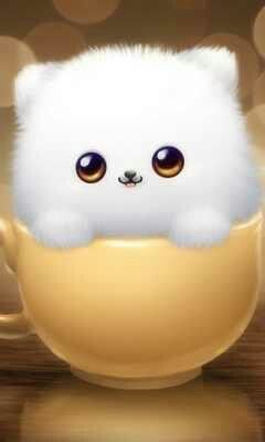 Cute Kitty In Tea Cup Iphone Wallpaper Background Cute Images For Dp Whatsapp Dp Images Dp Photos